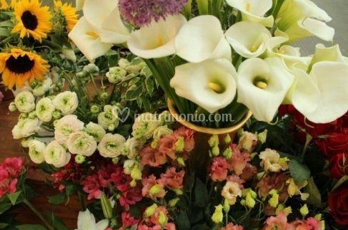 La fata dei fiori for Decorazione giardino matrimonio