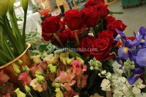 Ampia scelta di fiori