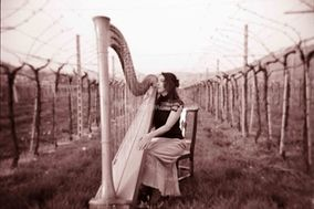 Harp and song