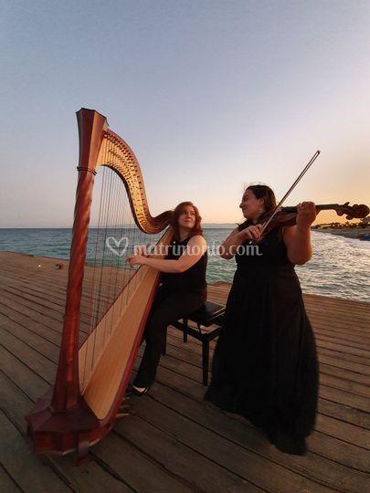 Duo arpista e violino