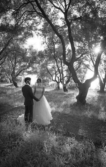 Sposi nel giardino alberato