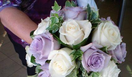 Il Fiore di Maynard Maria Veronica 1