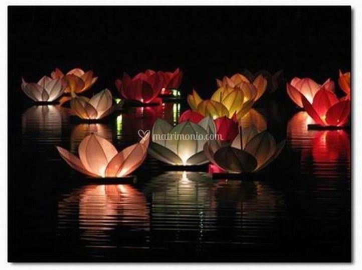 Lanterne fiore sull'acqua