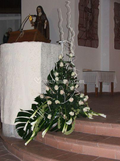 Fiori e piante da Lisetta