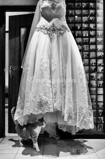 Vestito Matrimonio Uomo Ospite : Fotostudio kronos
