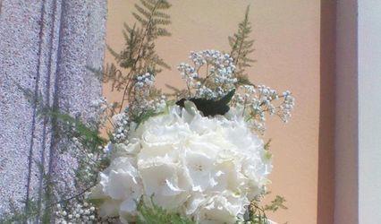Eleganti Atmosfere di Cremona Ilenia 2