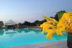 Il borgo degli ulivi