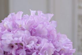 I fiori che vorrei