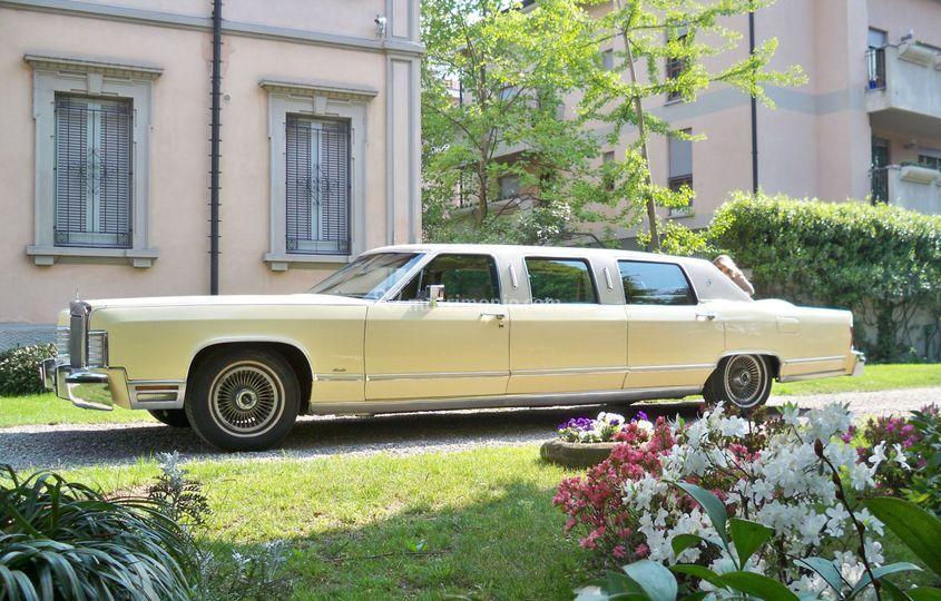 Franca, Lincoln Limousine