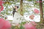 Innamorati Wedding Studio