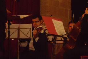 Trio Fallea