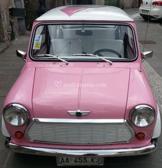 Mini rosa e rossetto