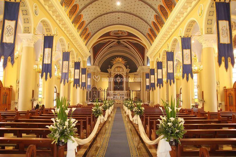 Soprano per musica in Chiesa