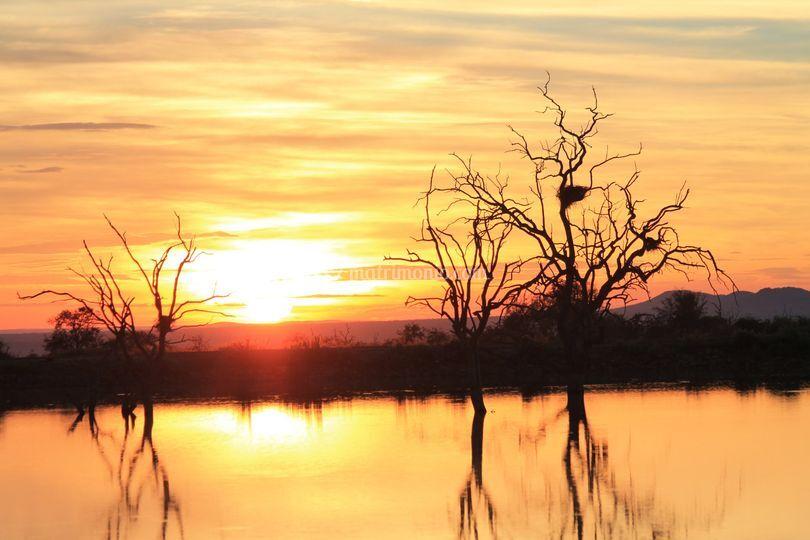 Sudafrica all'alba