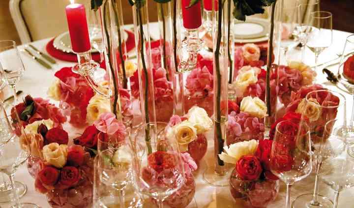 Rosa a Colori