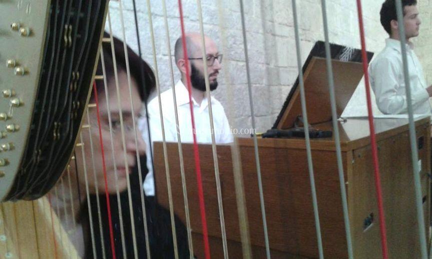 Organo, coro e arpa