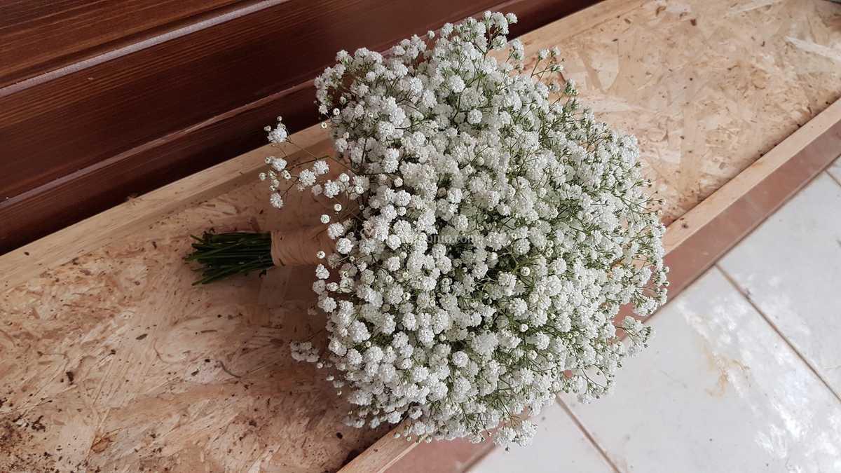 Bouquet Sposa Nebbiolina.Bouquet Sposa Nebbiolina Di Fioreria Fleurs Foto 76
