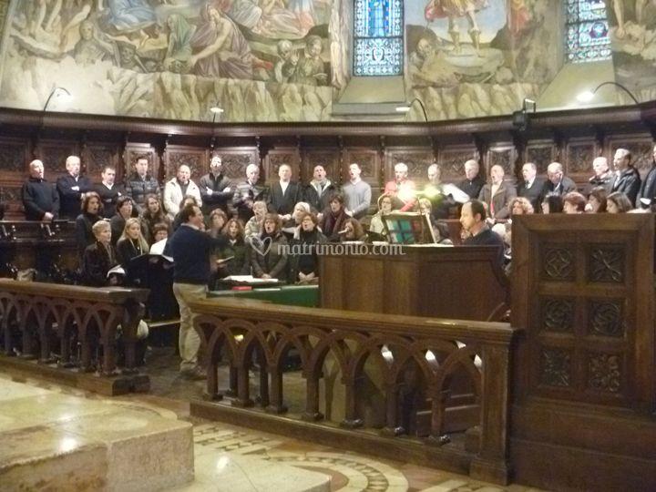Coro e organo - Assisi (PG)