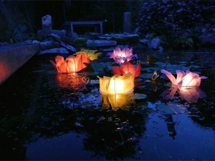 Lanterne galleggianti piscina