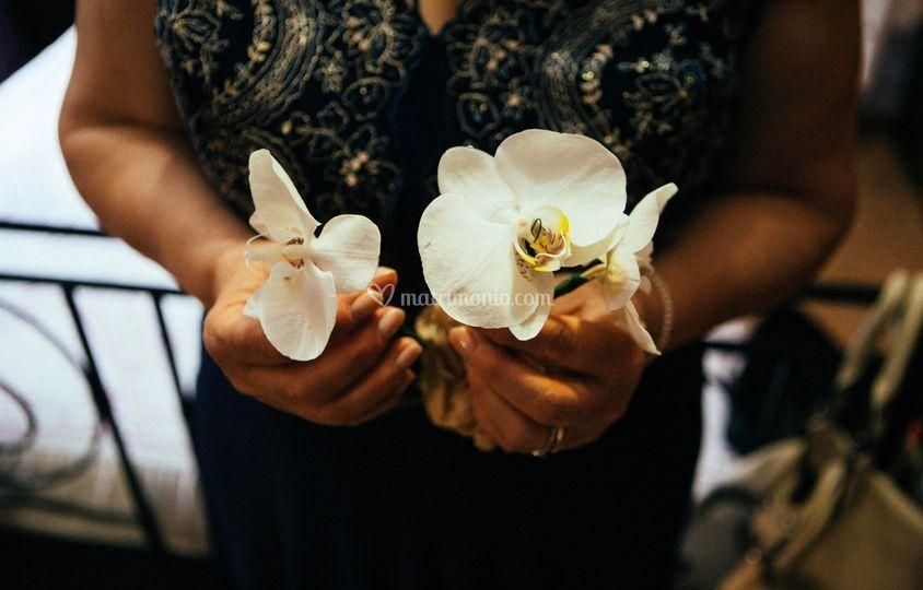 Orchidee tra i capelli