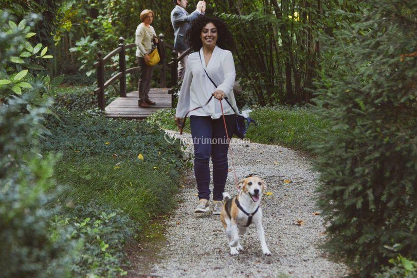 Silvia Wedding Dog Sitter
