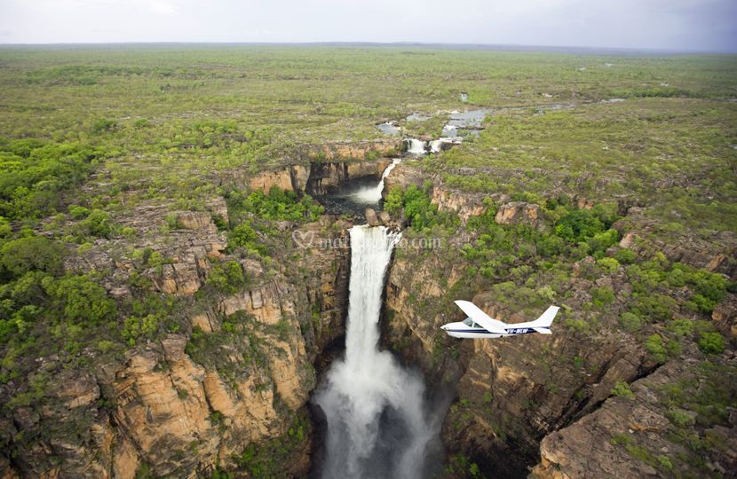 Kakadu - Australia