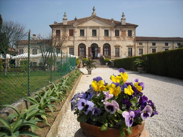 Viale ingresso villa