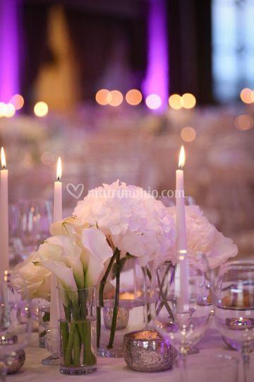 Elegante total white