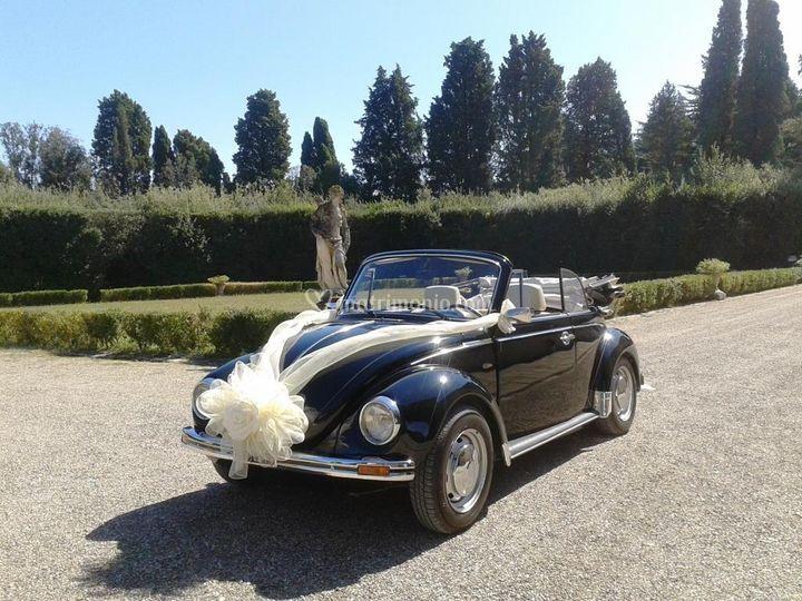 Macchine Matrimonio Toscana : Noleggio maggiolone vw