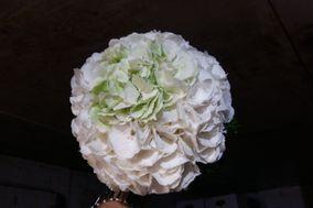 Natalino Da Campo Floral Designer