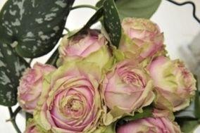 Natural Desing Floreale