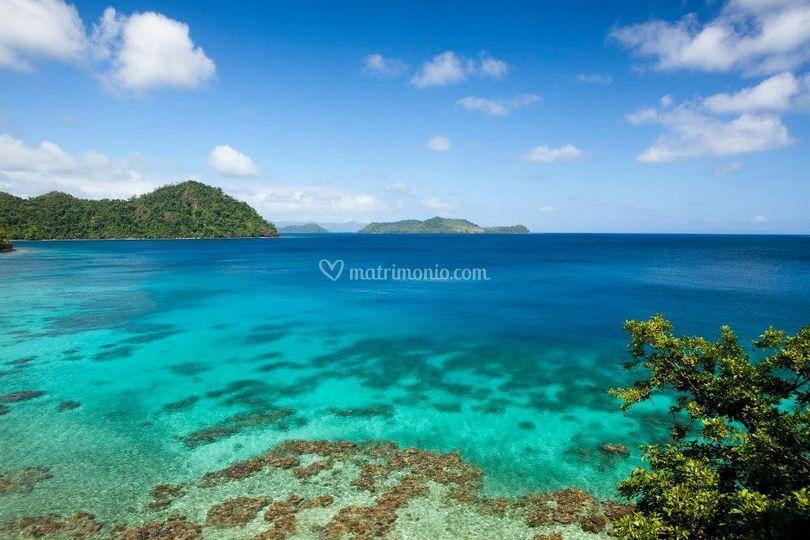 Isole Fiji (Foto Giorgio D.)