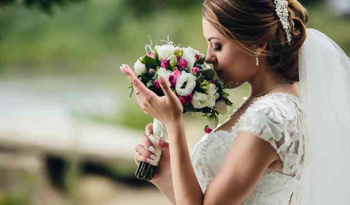Wedding And Pet's -Stylist