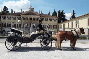 F.lli Zucchi Carrozze e Cavalli