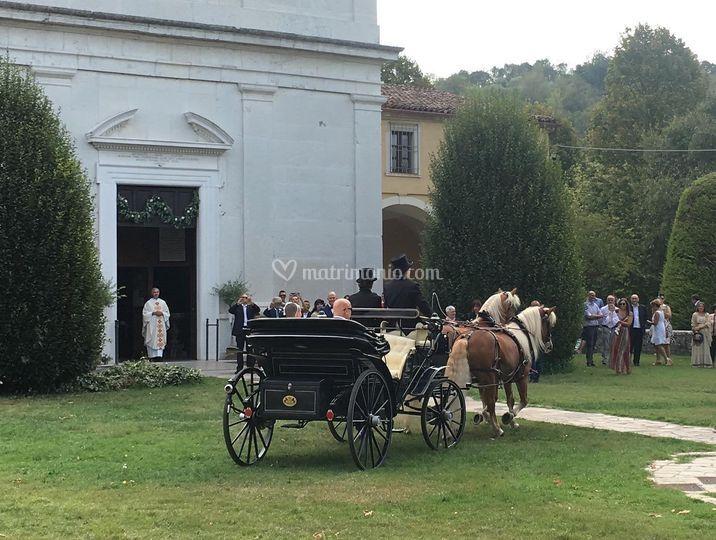 Arrivo - F.lli Zucchi Carrozze e Cavalli