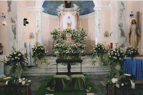 Piante e Fiori di Varricchio Silvio