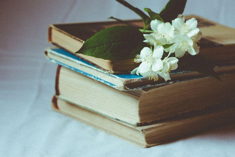 I libri sono rilegati con cura