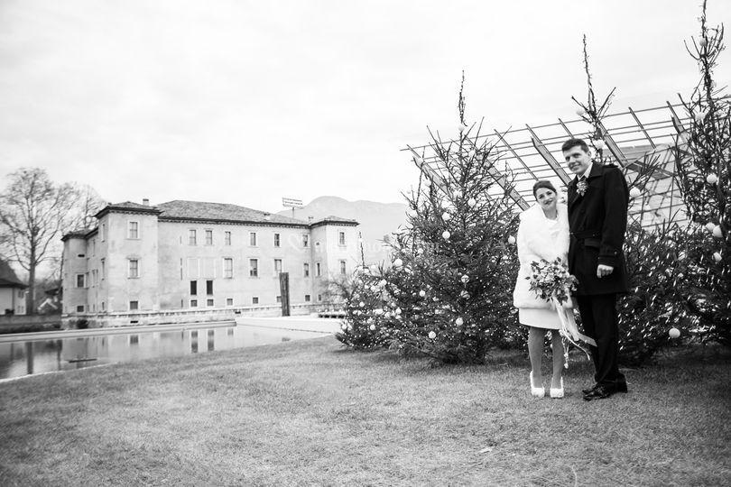 Le albere, Muse Trento sposi