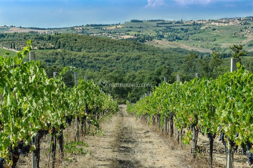 Location Chianti senese