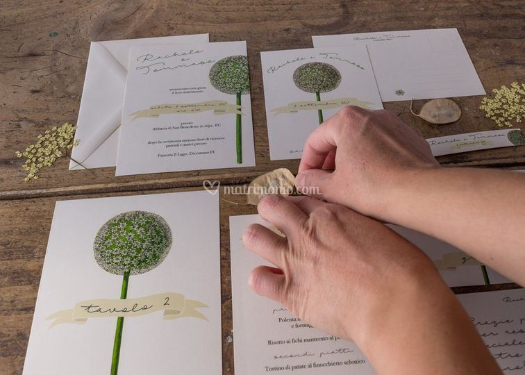 Lily&Sage Design