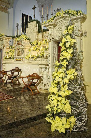 Matrimonio Natalizio Fiori : Fioreria pedone