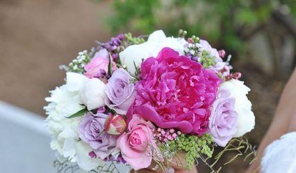 Il bello dei fiori