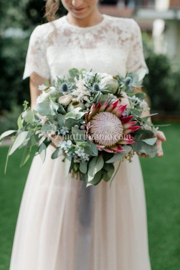 Wedding tema protea