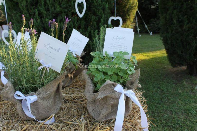 Tableau Matrimonio Tema Erbe Aromatiche : Matrimonio piante aromatiche fiori country