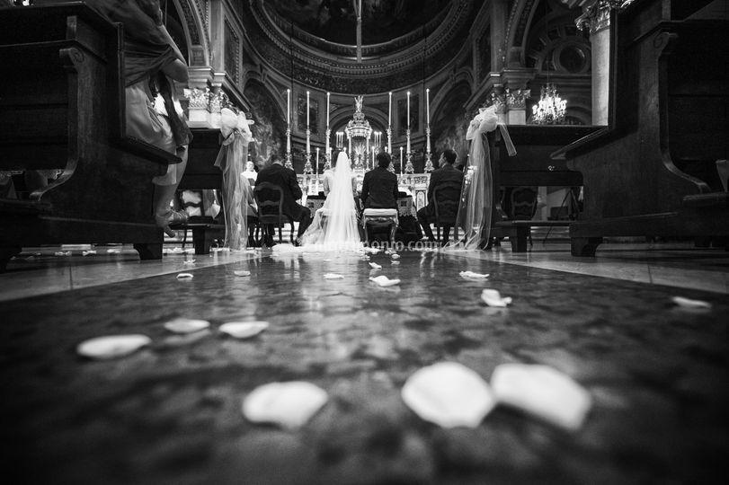 I petali e gli sposi