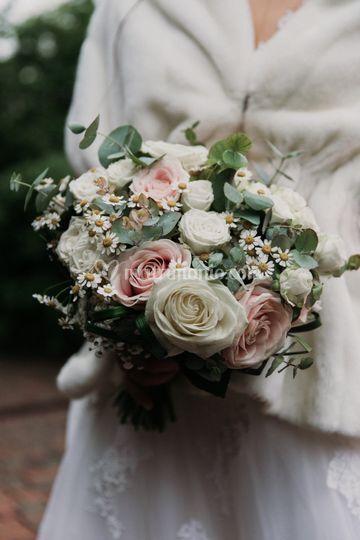 Camomilla e bouquet
