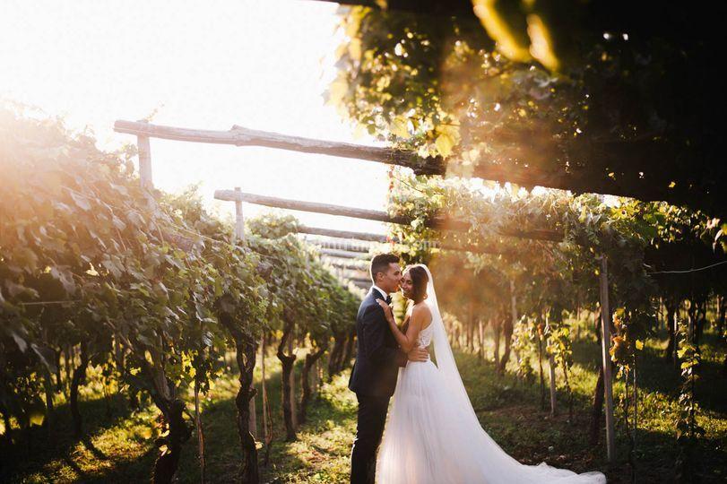 Sposi nelle vigne