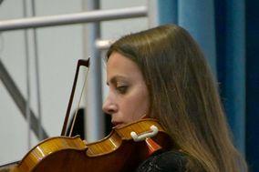 Violin's Melodies