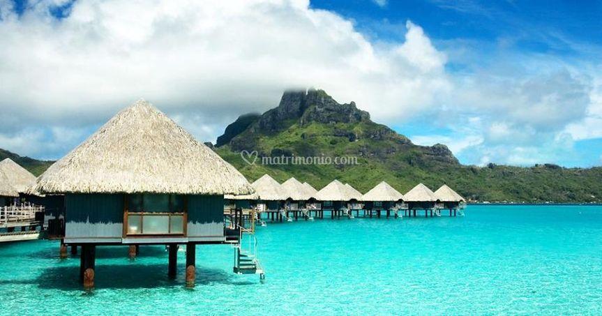 Maldive special