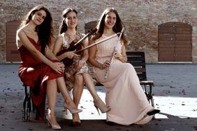 Into the White Trio